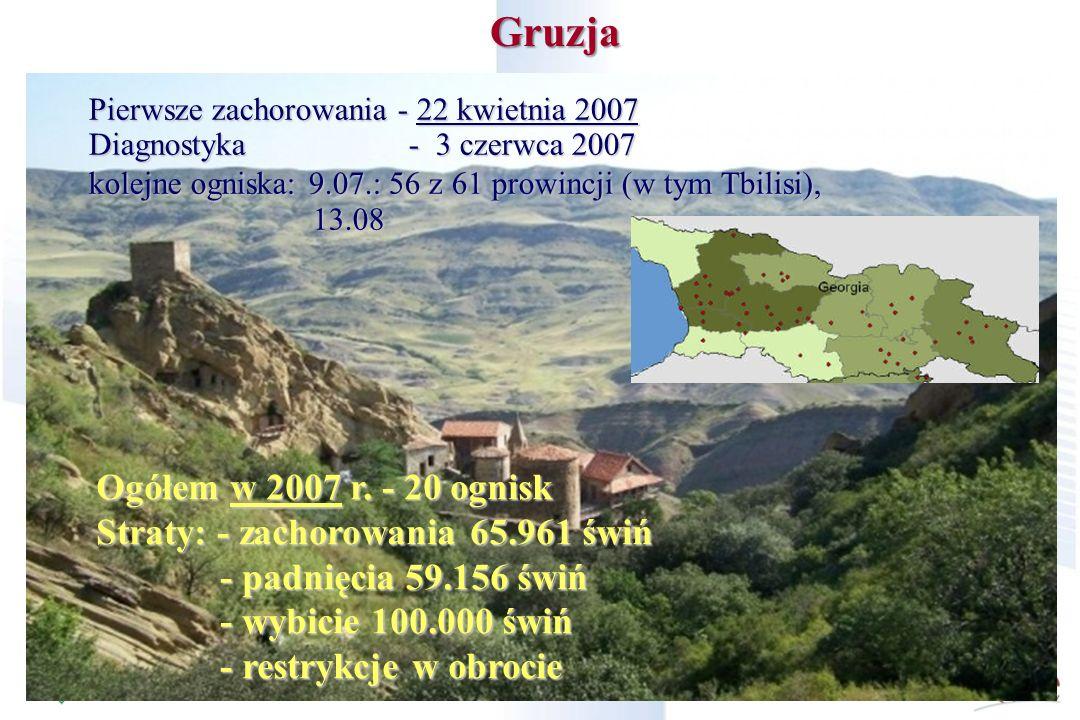 Gruzja Ogółem w 2007 r. - 20 ognisk Straty: - zachorowania 65.961 świń