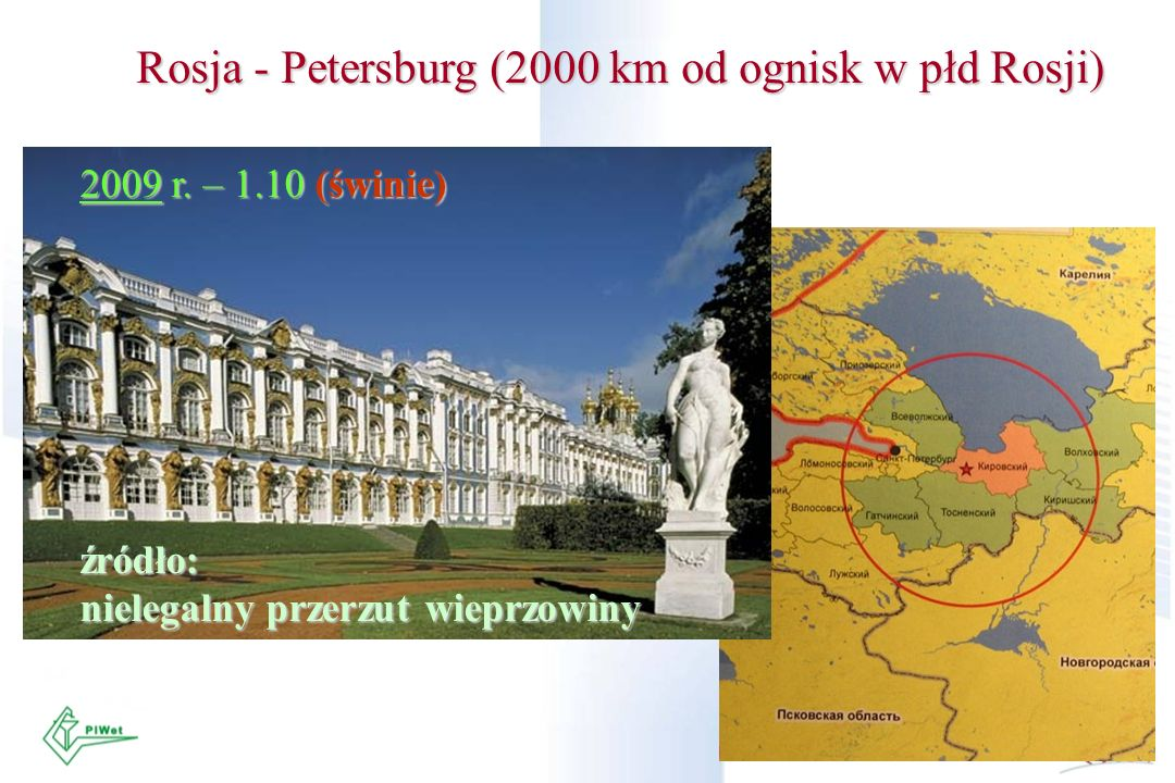 Rosja - Petersburg (2000 km od ognisk w płd Rosji)