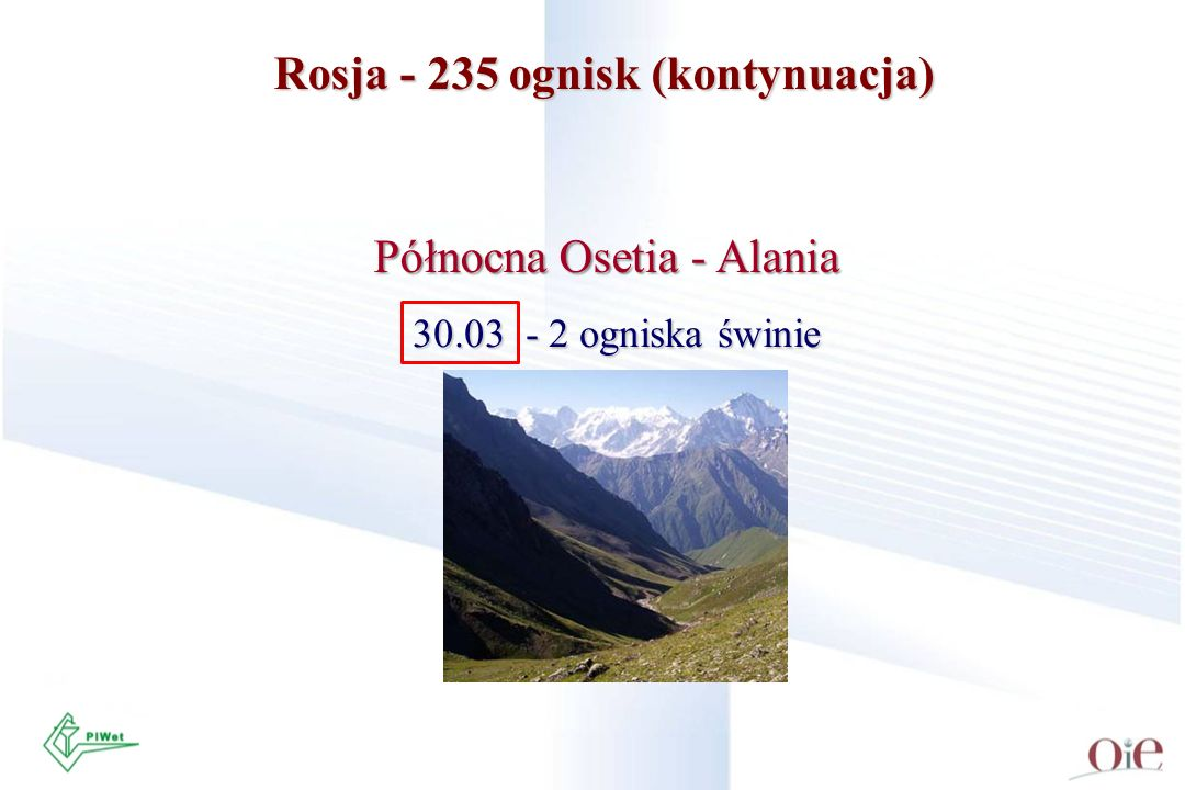 Rosja - 235 ognisk (kontynuacja)