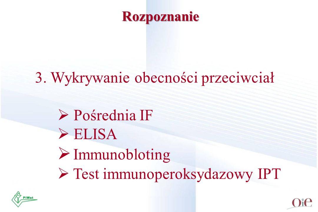 Immunobloting 3. Wykrywanie obecności przeciwciał Pośrednia IF ELISA
