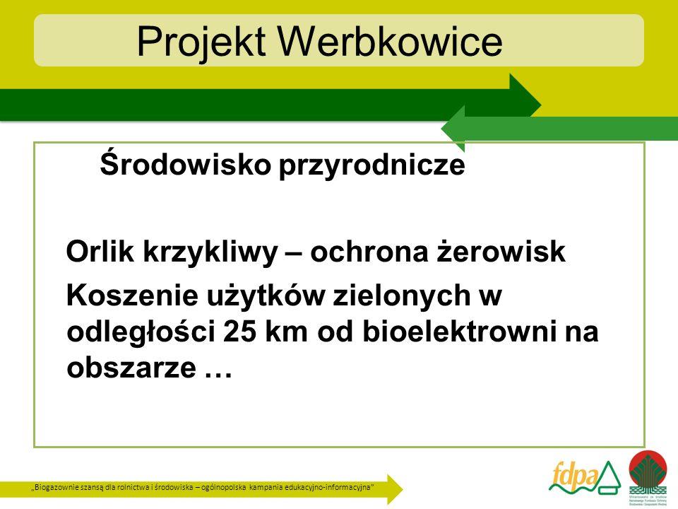 Projekt Werbkowice Środowisko przyrodnicze