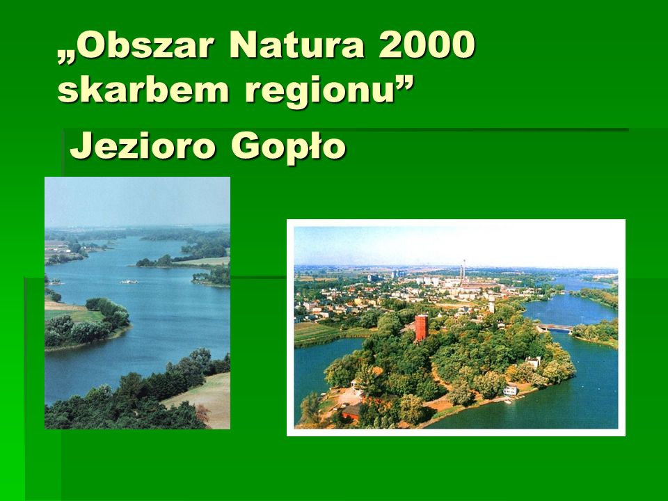 """Obszar Natura 2000 skarbem regionu Jezioro Gopło"