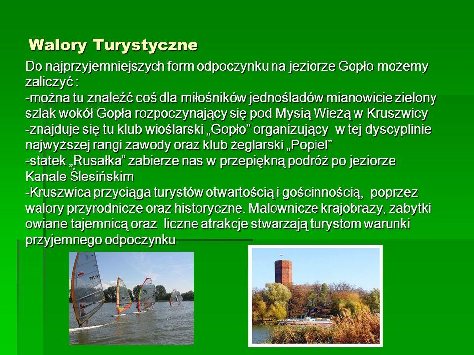 Walory Turystyczne Do najprzyjemniejszych form odpoczynku na jeziorze Gopło możemy. zaliczyć :