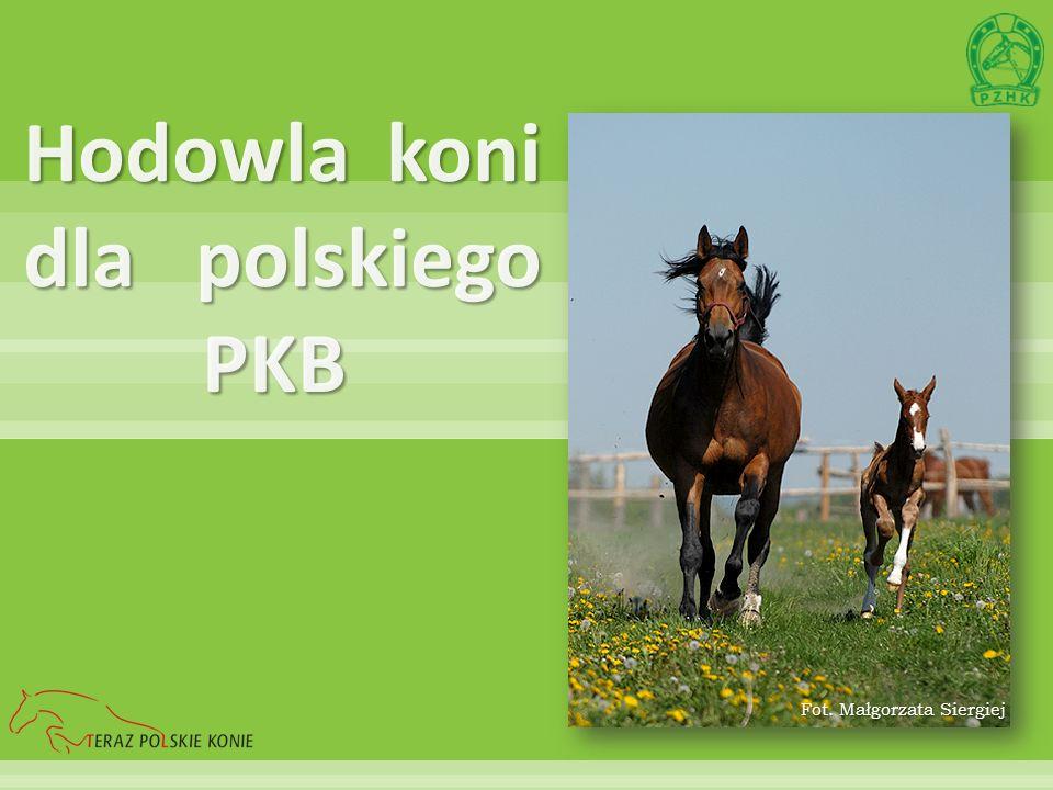 Hodowla koni dla polskiego PKB