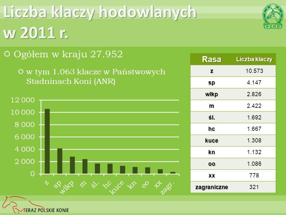 Liczba klaczy hodowlanych w 2011 r.