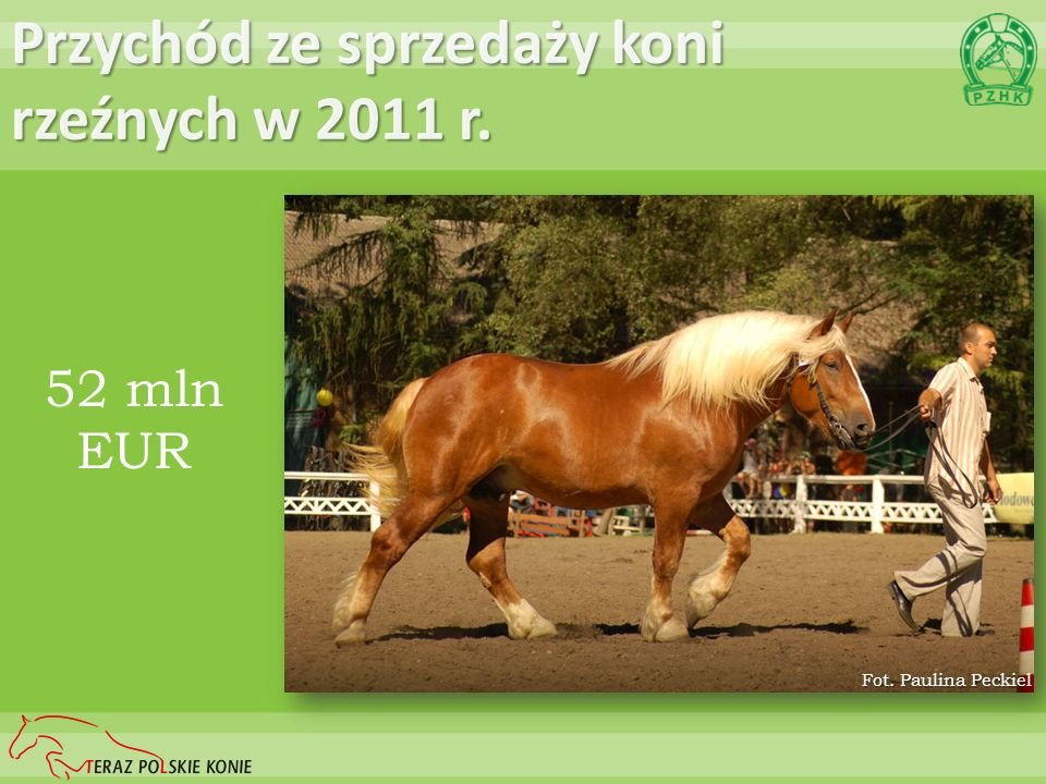 Przychód ze sprzedaży koni rzeźnych w 2011 r.