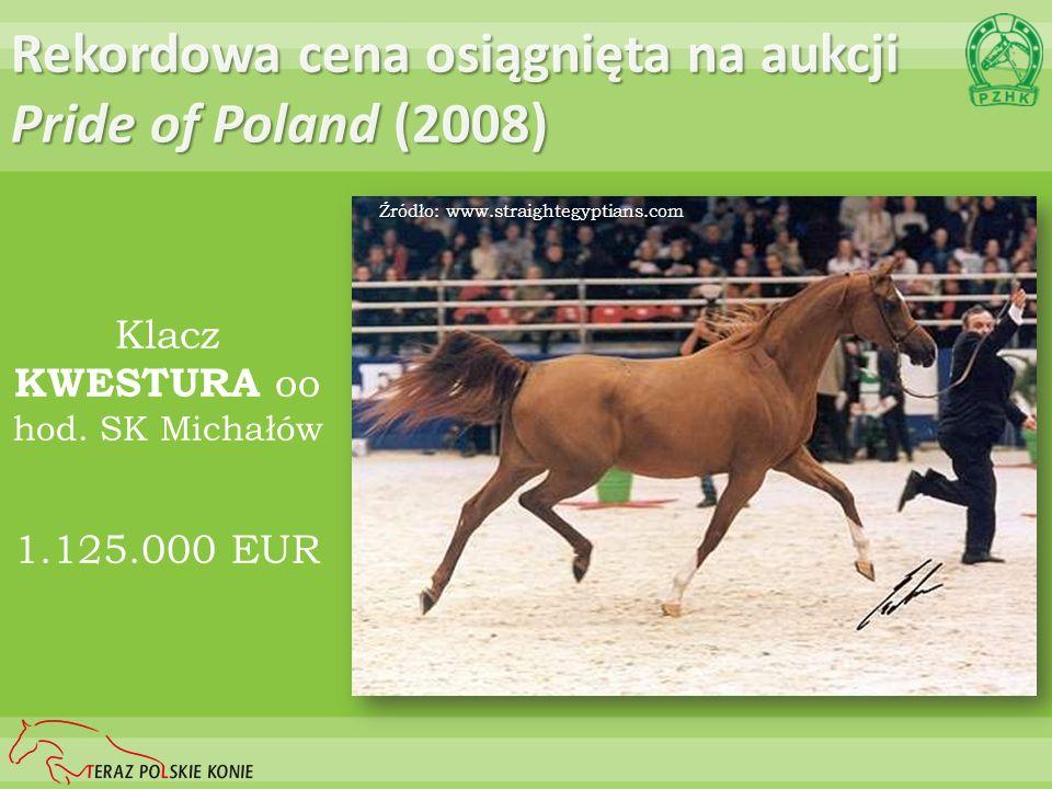 Rekordowa cena osiągnięta na aukcji Pride of Poland (2008)