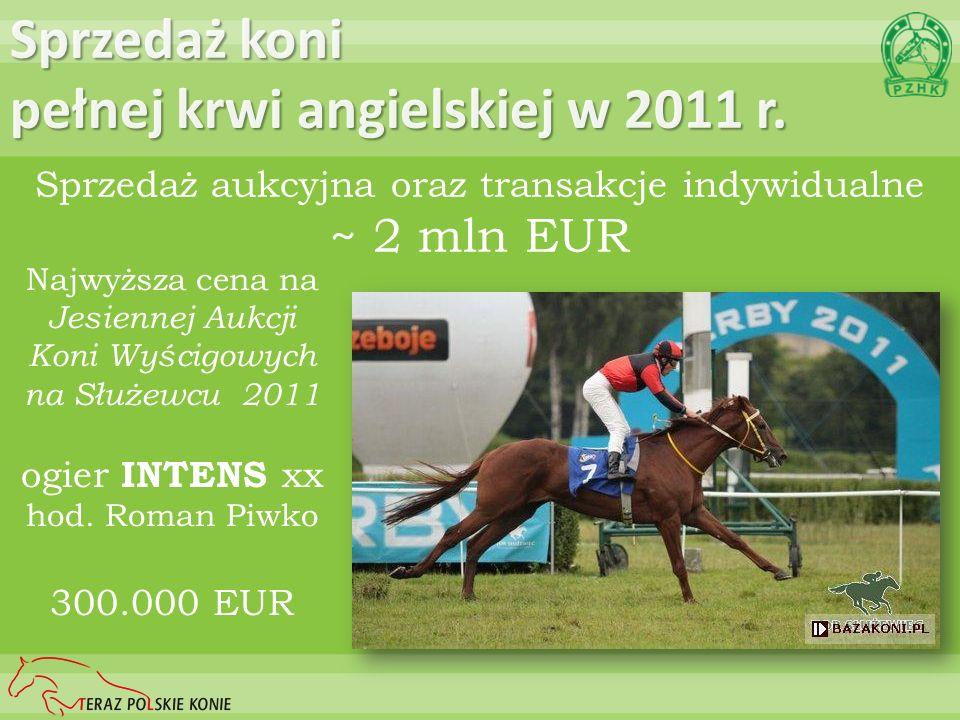 Sprzedaż koni pełnej krwi angielskiej w 2011 r.