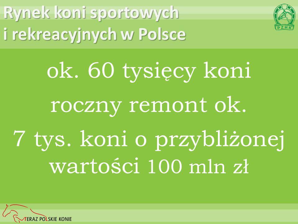 Rynek koni sportowych i rekreacyjnych w Polsce