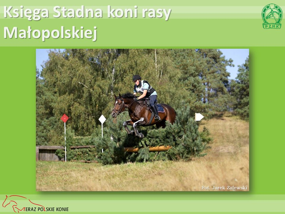 Księga Stadna koni rasy Małopolskiej