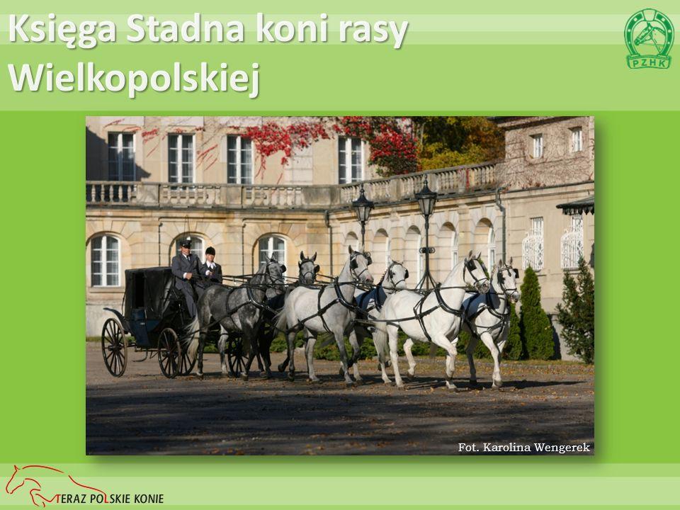 Księga Stadna koni rasy Wielkopolskiej