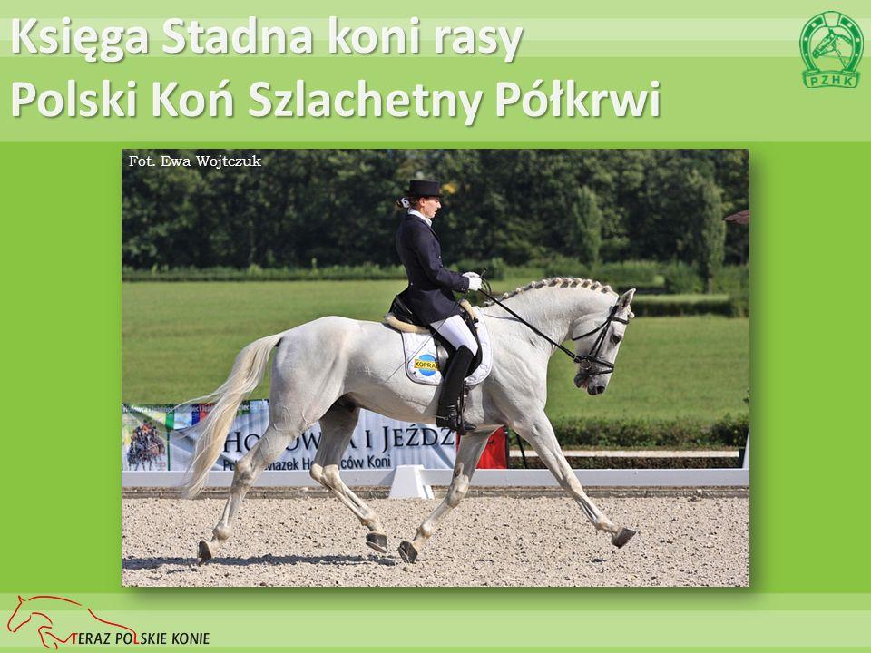 Księga Stadna koni rasy Polski Koń Szlachetny Półkrwi