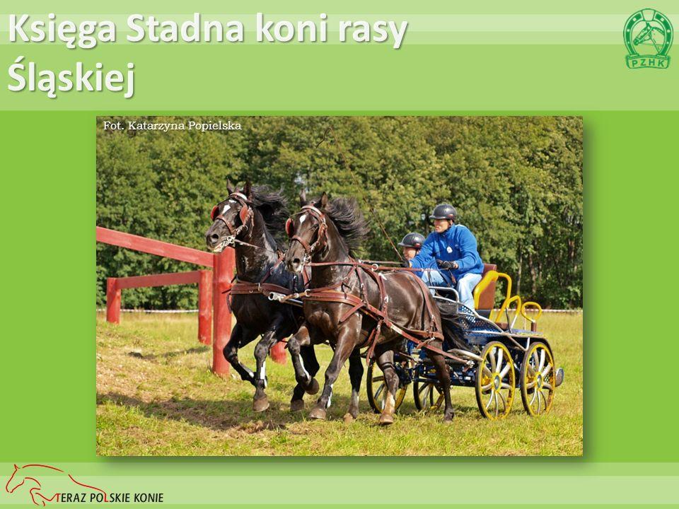 Księga Stadna koni rasy Śląskiej