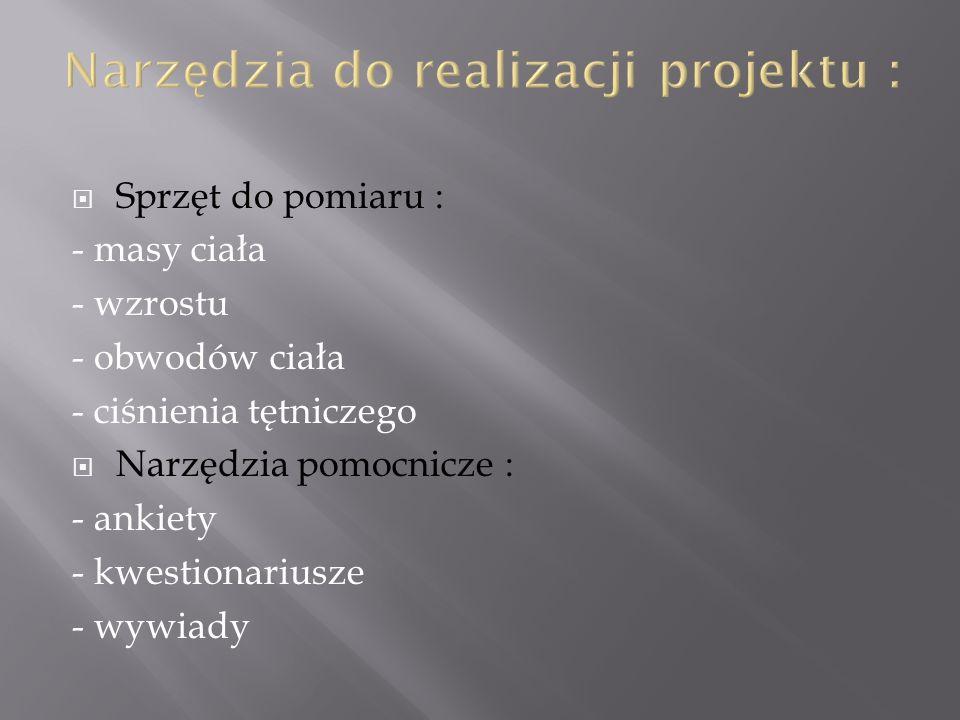 Narzędzia do realizacji projektu :
