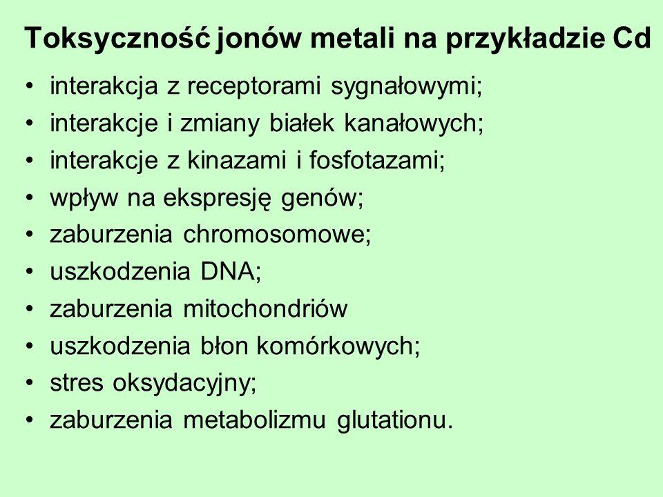 Toksyczność jonów metali na przykładzie Cd