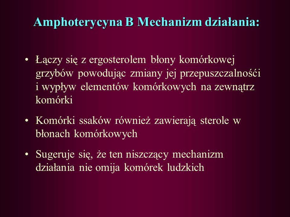 Amphoterycyna B Mechanizm działania: