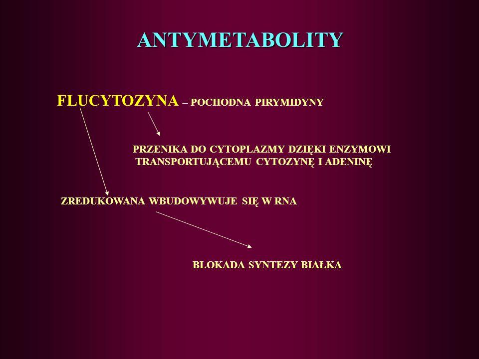 ANTYMETABOLITY FLUCYTOZYNA – POCHODNA PIRYMIDYNY