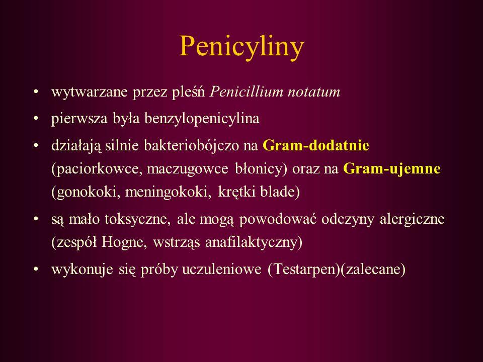 Penicyliny wytwarzane przez pleśń Penicillium notatum