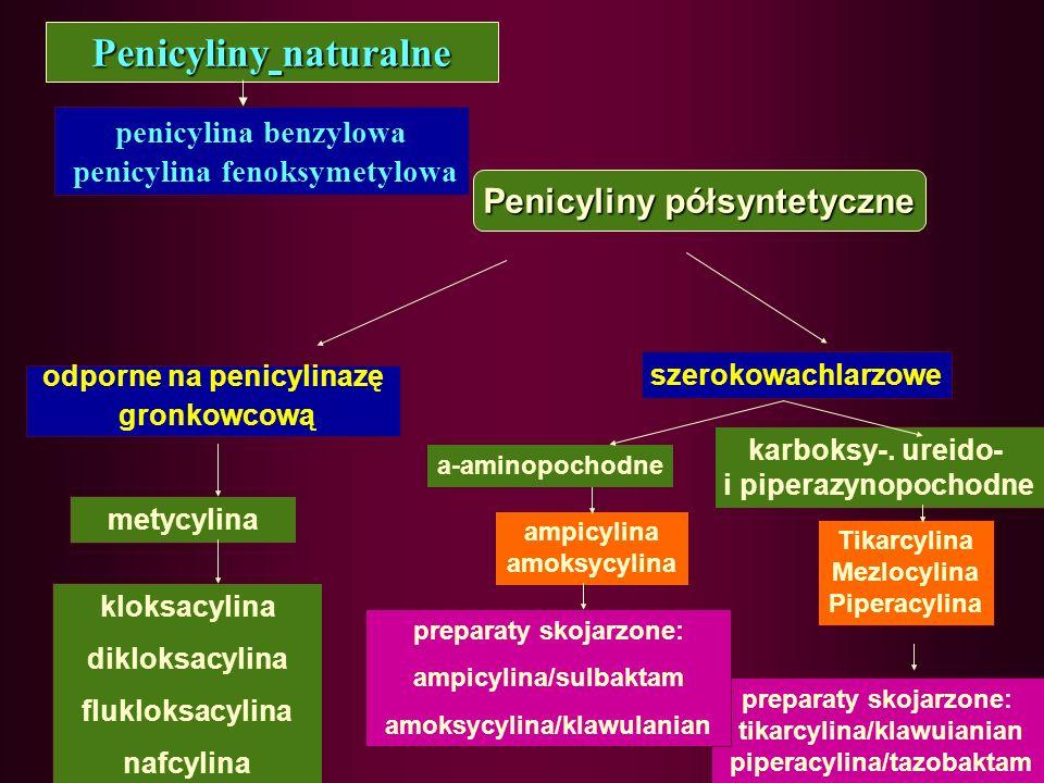 Penicyliny naturalne Penicyliny półsyntetyczne penicylina benzylowa