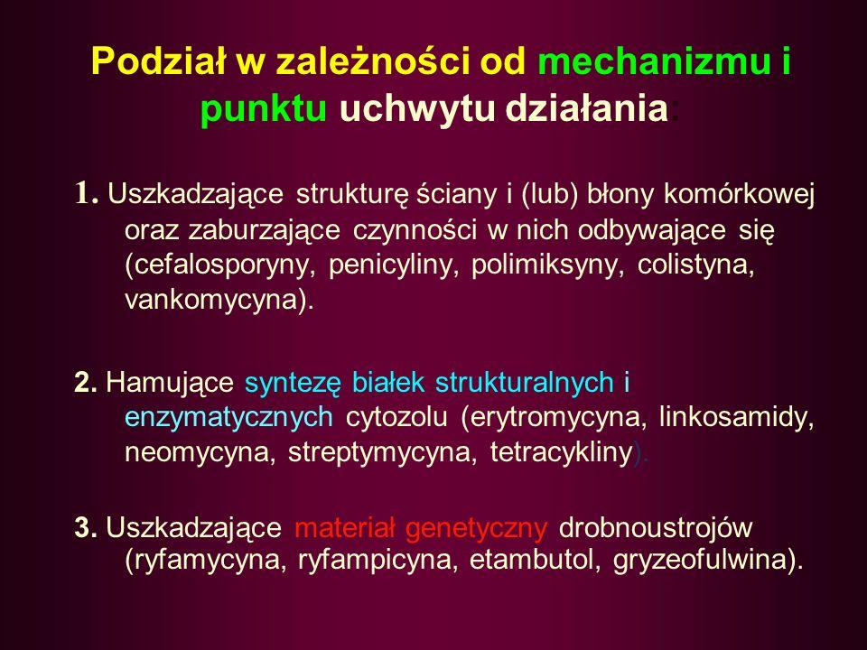 Podział w zależności od mechanizmu i punktu uchwytu działania: