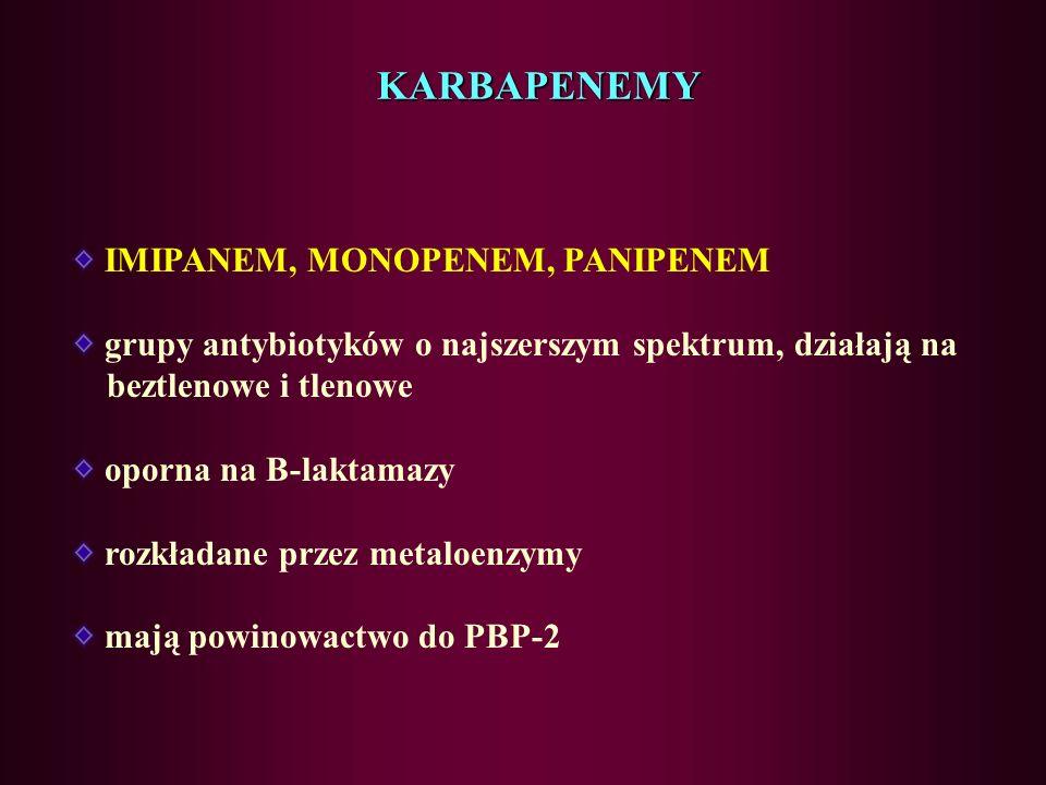 KARBAPENEMY IMIPANEM, MONOPENEM, PANIPENEM