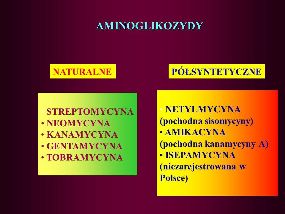 AMINOGLIKOZYDY NATURALNE PÓŁSYNTETYCZNE NETYLMYCYNA