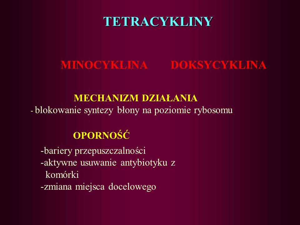 TETRACYKLINY MINOCYKLINA DOKSYCYKLINA OPORNOŚĆ
