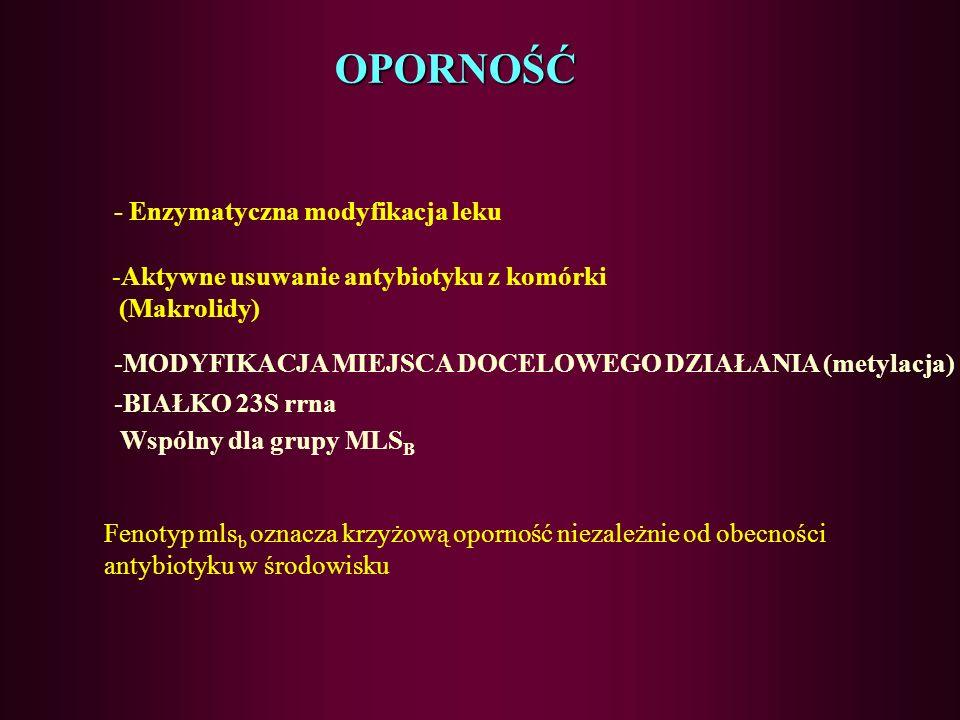 OPORNOŚĆ - Enzymatyczna modyfikacja leku