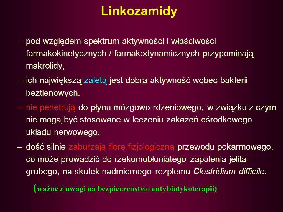 Linkozamidy (ważne z uwagi na bezpieczeństwo antybiotykoterapii)