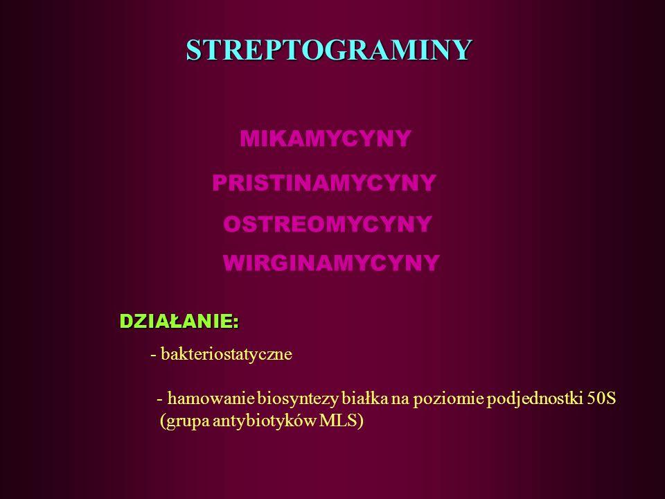 STREPTOGRAMINY MIKAMYCYNY PRISTINAMYCYNY OSTREOMYCYNY WIRGINAMYCYNY