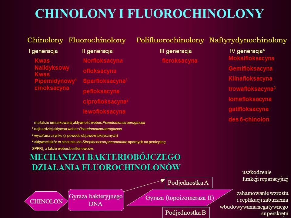 CHINOLONY I FLUOROCHINOLONY