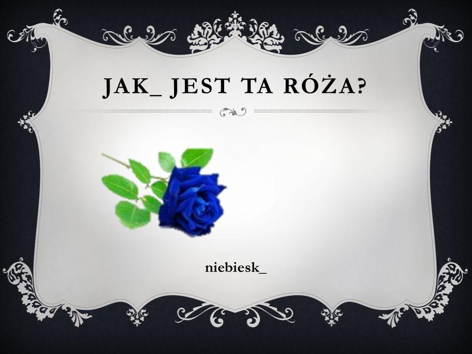 Jak_ jest ta RÓŻA niebiesk_