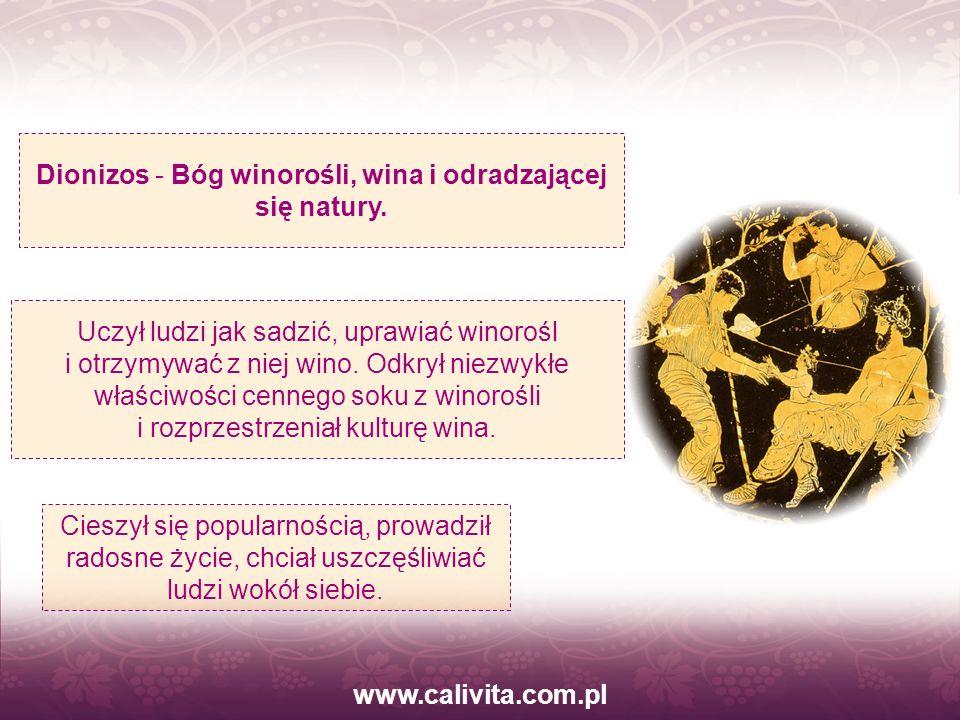 Dionizos - Bóg winorośli, wina i odradzającej się natury.