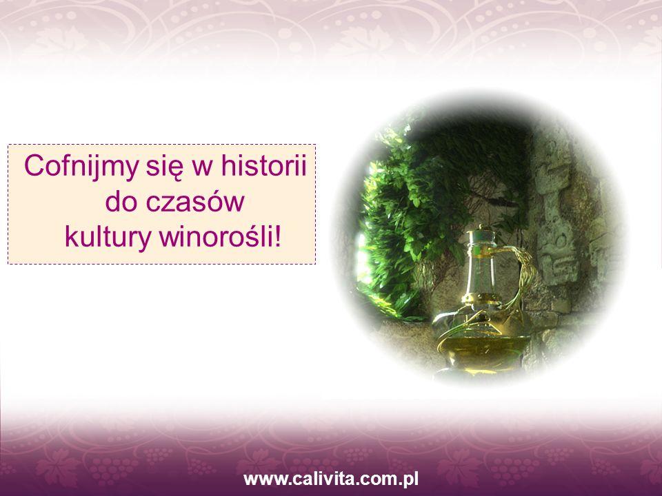 Cofnijmy się w historii do czasów kultury winorośli!