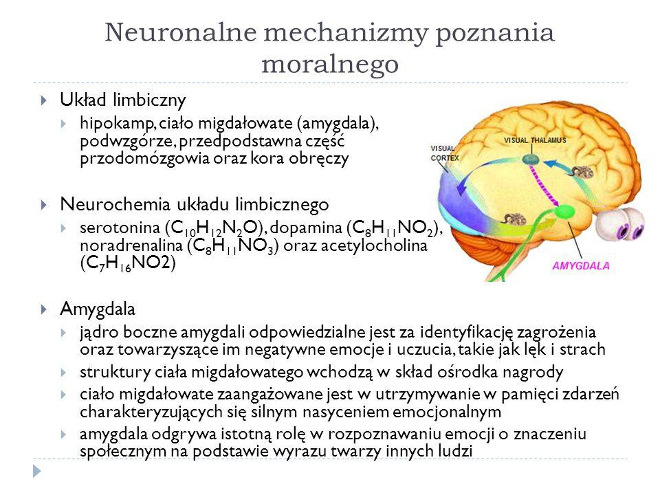 Neuronalne mechanizmy poznania moralnego