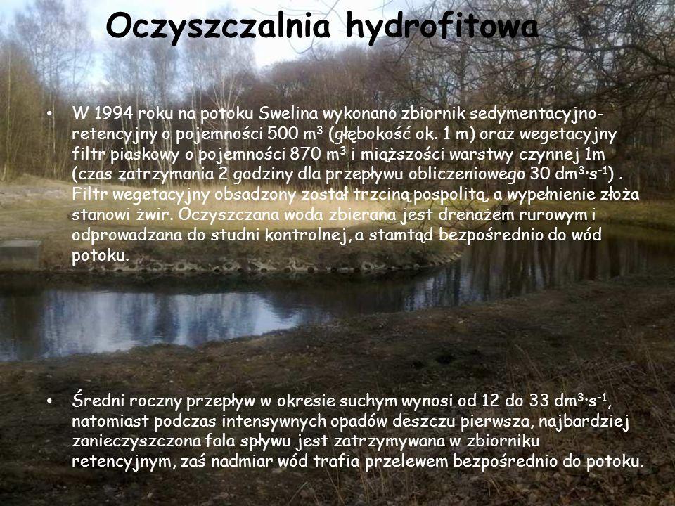Oczyszczalnia hydrofitowa