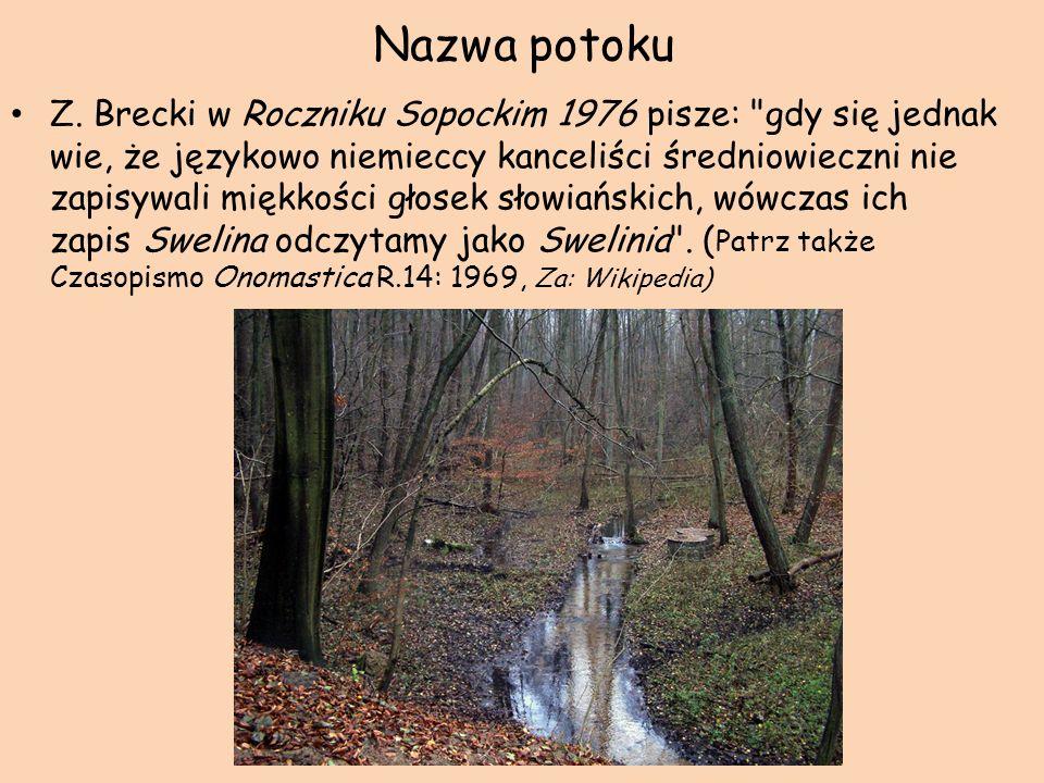 Nazwa potoku