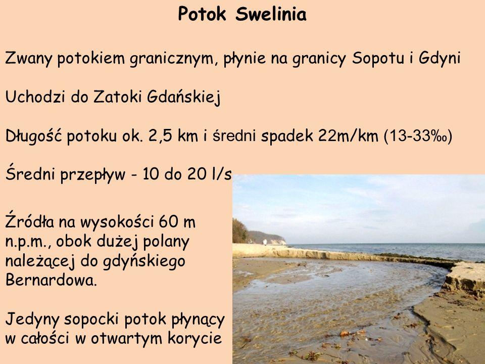 Potok SweliniaZwany potokiem granicznym, płynie na granicy Sopotu i Gdyni. Uchodzi do Zatoki Gdańskiej.