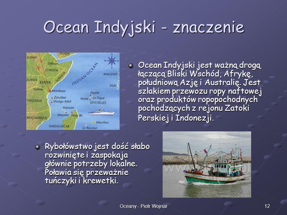 Ocean Indyjski - znaczenie