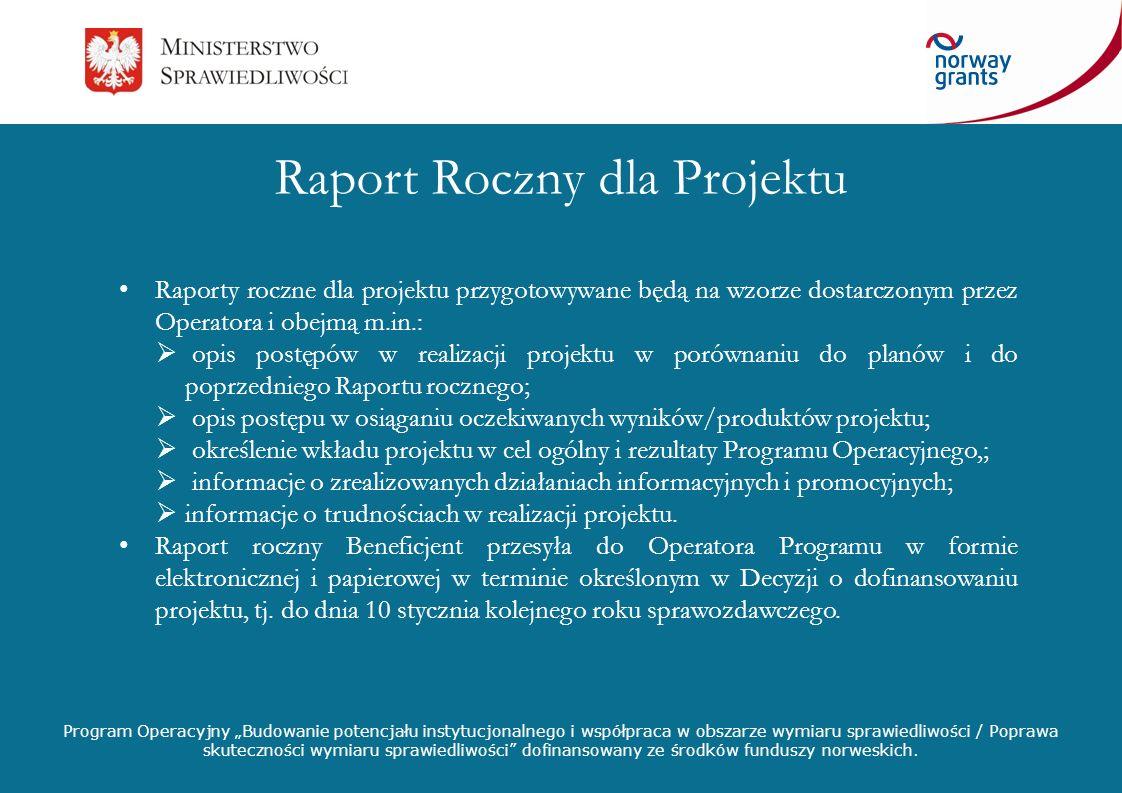 Raport Roczny dla Projektu