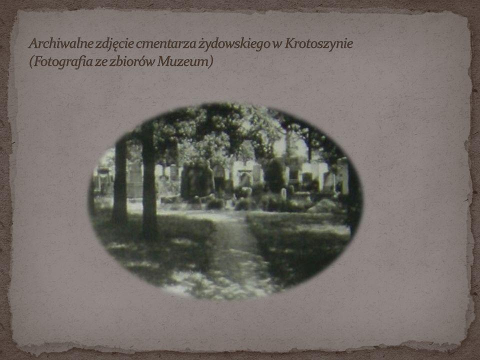 Archiwalne zdjęcie cmentarza żydowskiego w Krotoszynie (Fotografia ze zbiorów Muzeum)