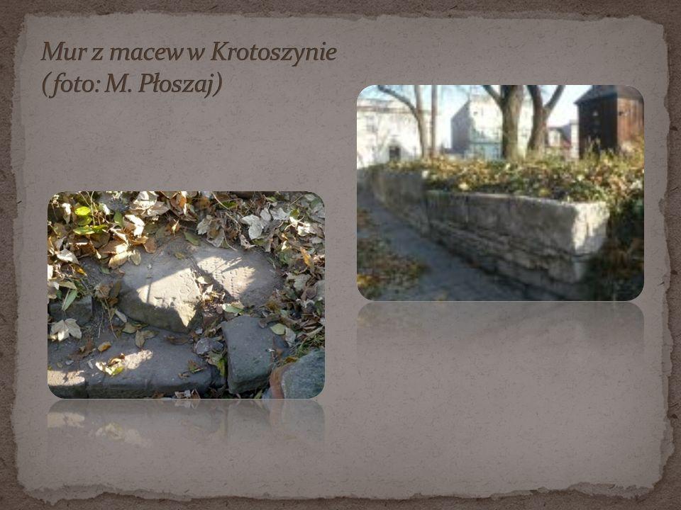 Mur z macew w Krotoszynie (foto: M. Płoszaj)