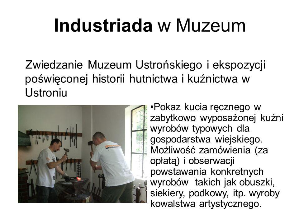 Industriada w Muzeum Zwiedzanie Muzeum Ustrońskiego i ekspozycji poświęconej historii hutnictwa i kuźnictwa w Ustroniu.
