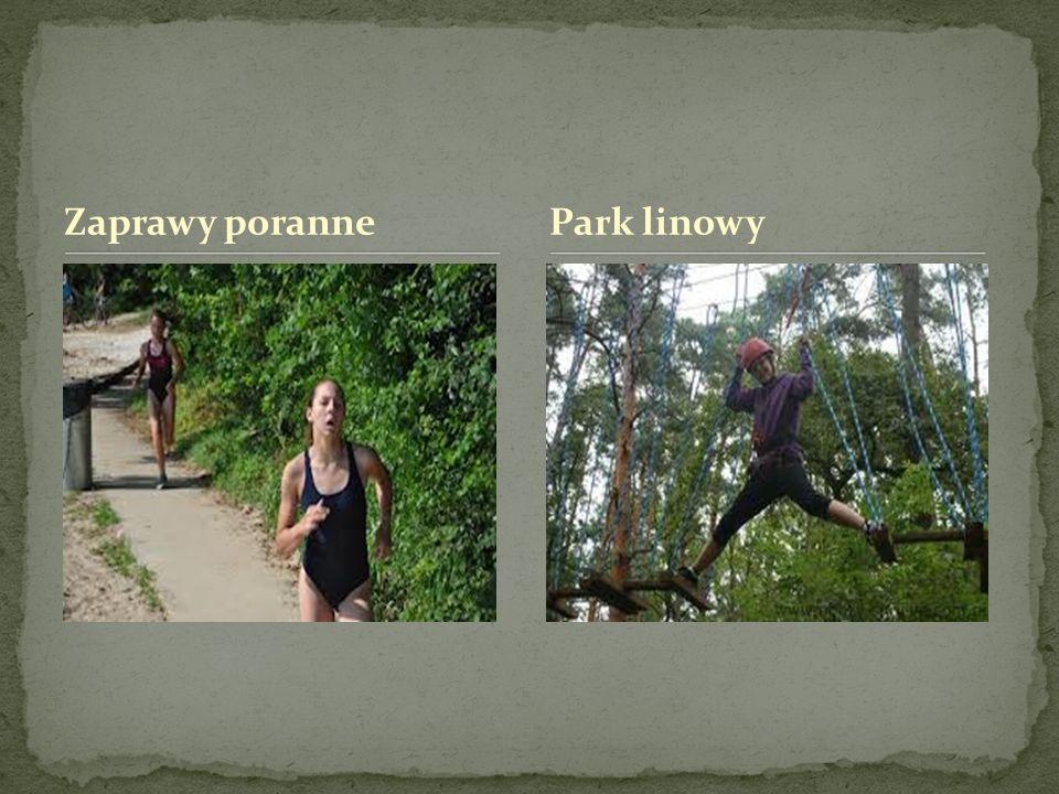 Zaprawy poranne Park linowy