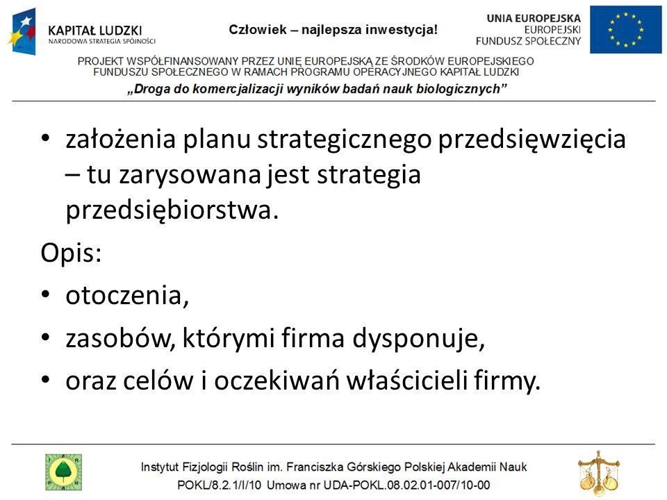 założenia planu strategicznego przedsięwzięcia – tu zarysowana jest strategia przedsiębiorstwa.
