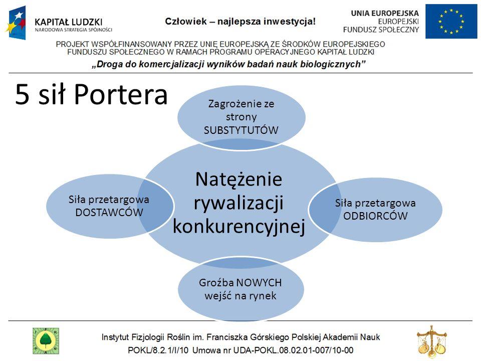 5 sił Portera Natężenie rywalizacji konkurencyjnej
