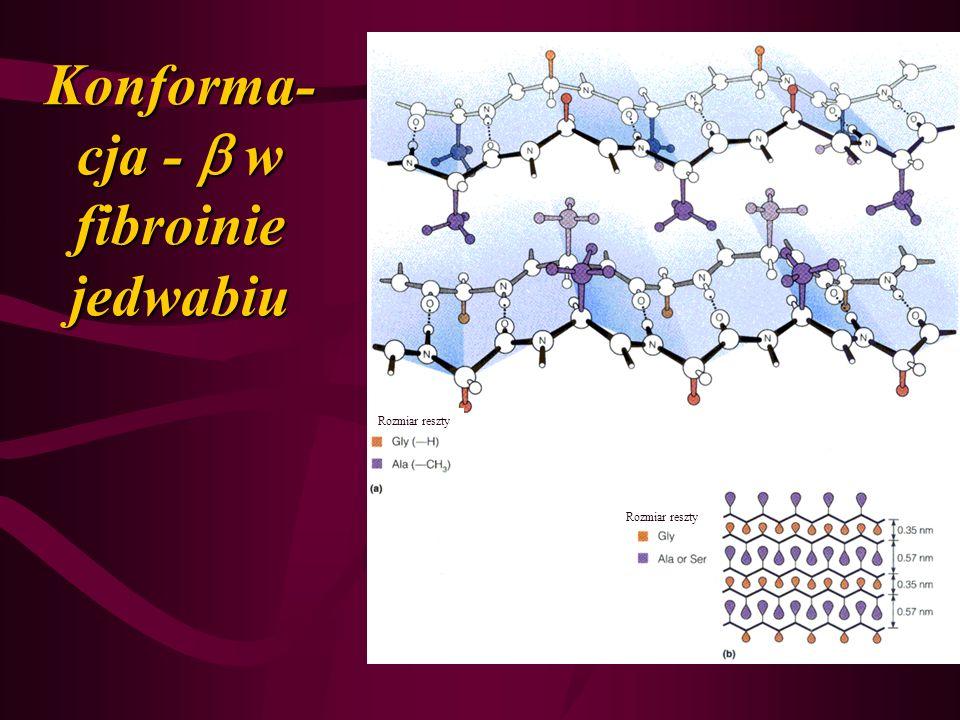 Konforma-cja -  w fibroinie jedwabiu