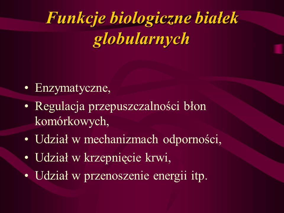 Funkcje biologiczne białek globularnych