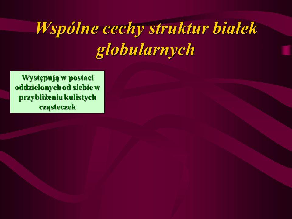 Wspólne cechy struktur białek globularnych