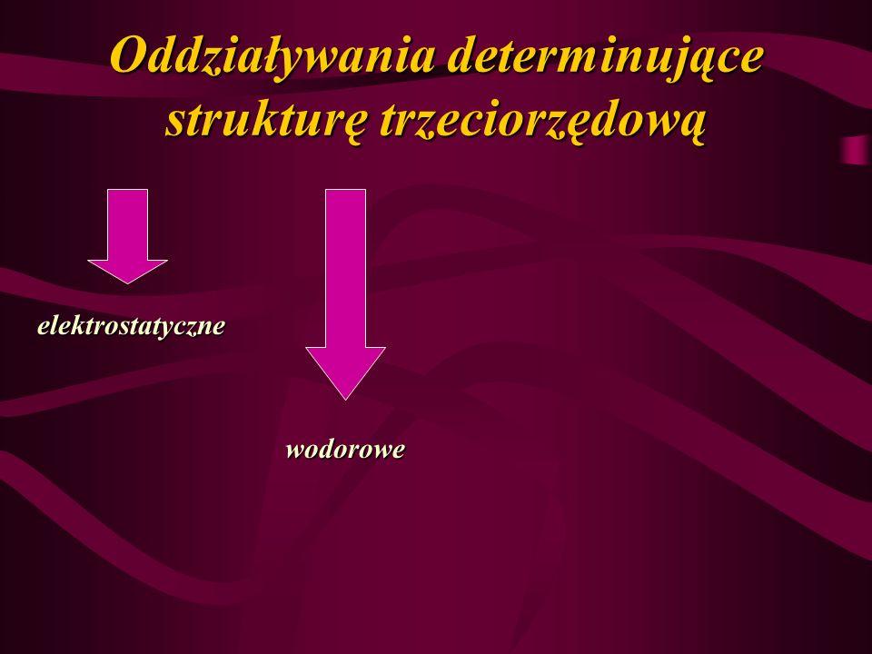 Oddziaływania determinujące strukturę trzeciorzędową